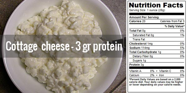 protein in cottage cheese