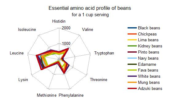 amino acid profile of beans