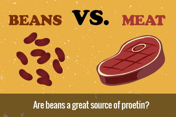 Are beans a great source of protein? Beans VS Meat