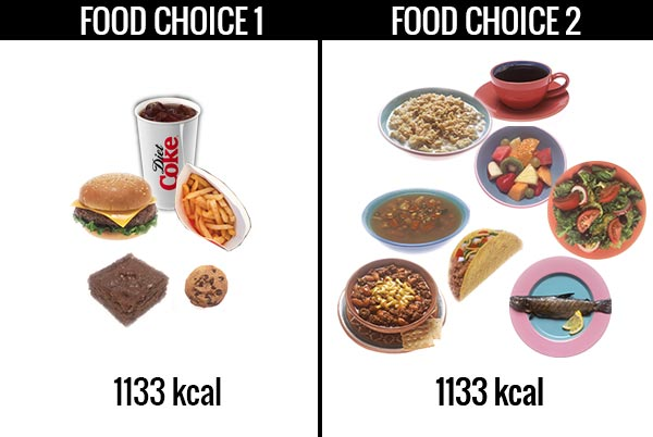calories in different food choices food dnesity