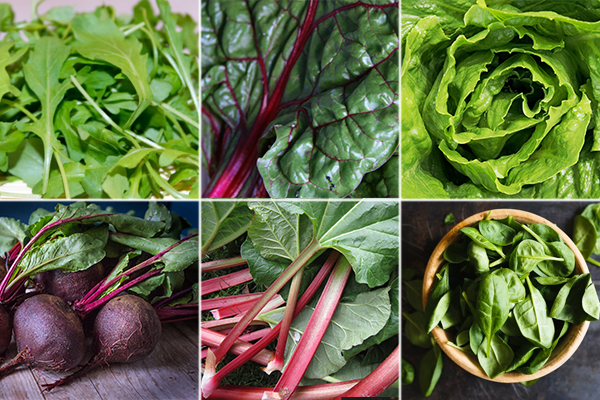 Sources of nitrate rich vegetables