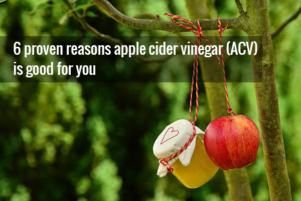 Apple cider vinegar and its benefits hanging from a tree